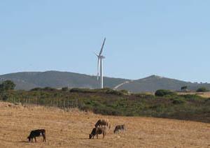 Immagini della Prima pala eolica sul Monte Grighine