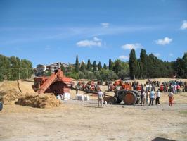 Esposizione e sfilata dei trattori d'epoca