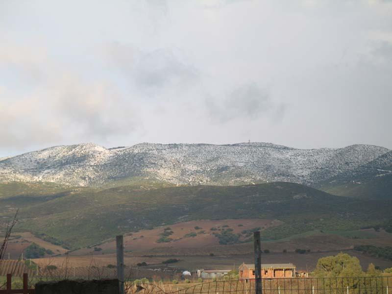 Nevicata sul Monte Grighine