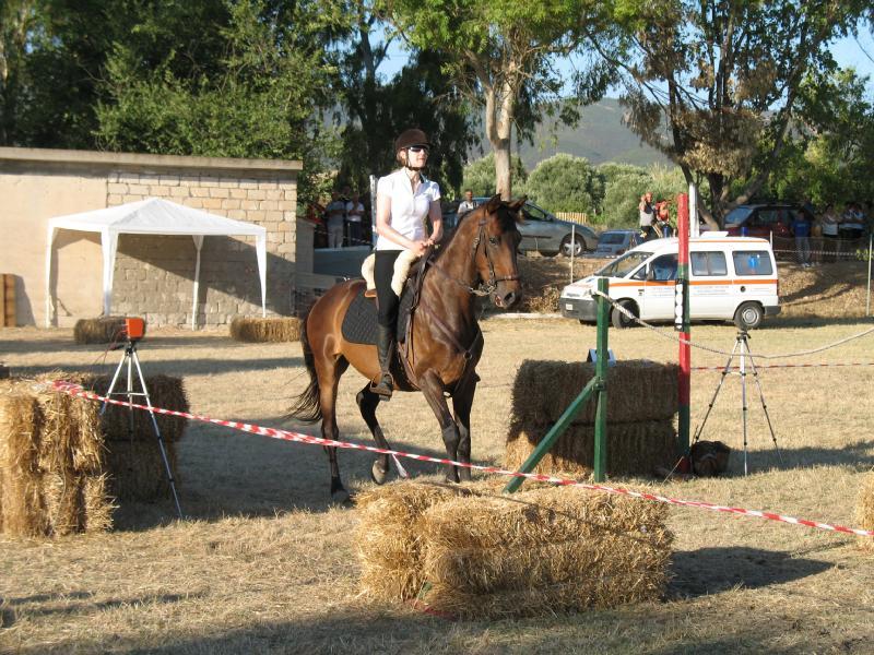 Gimkana a cavallo